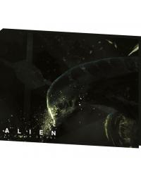 Alien | Pantalla del DM